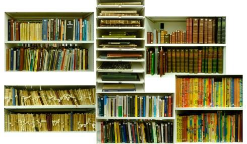 BookshelvesBasement01b